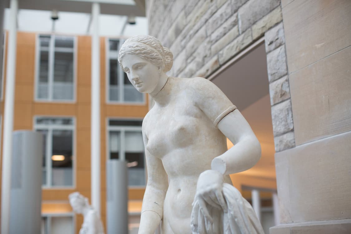 Cornell's cast of the Colonna Venus in the Vatican Museums, displayed as part of an installation in Klarman Hall.